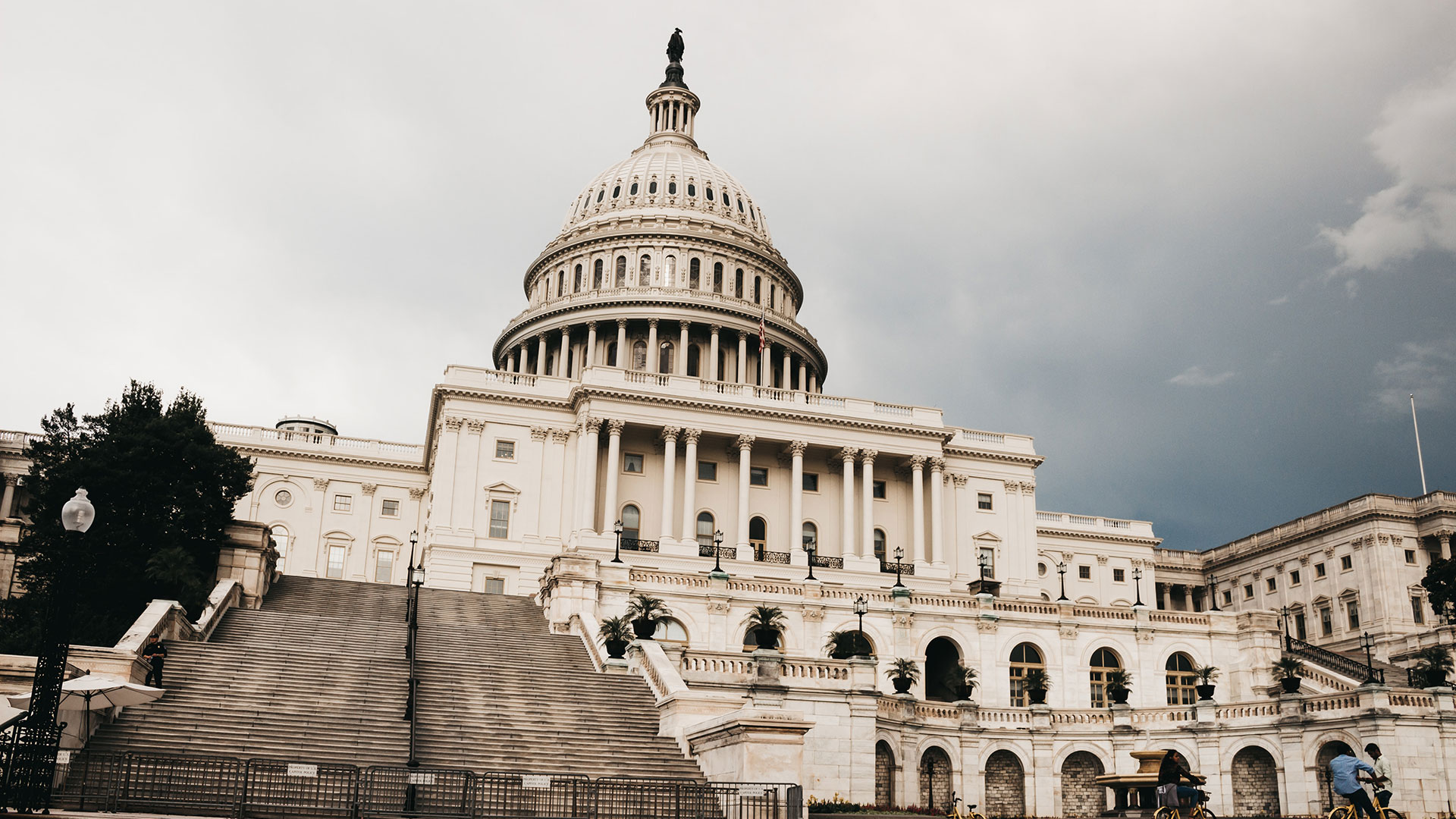 Social Media zerstört die Demokratie – und nun?